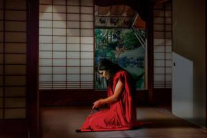 Samurai by doc-dd