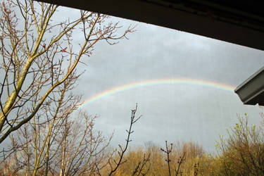 Morning rainbow by gmdwilcox