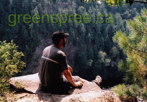greenspree's Profile Picture