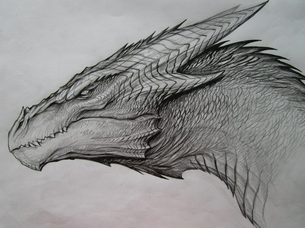 Dragon Sketch By TatianaMakeeva On DeviantArt