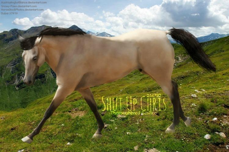 Shut Up Chris by HP-Dubai