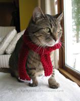 Winter Lexy by TigressRampant