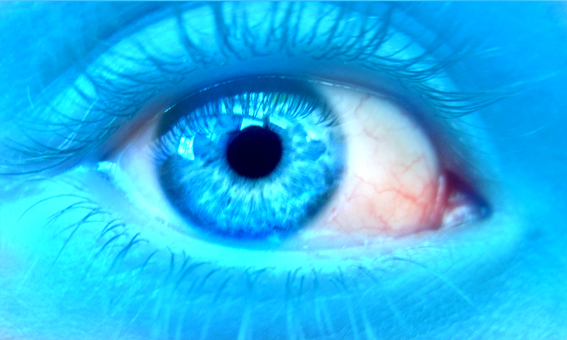 Eyes - Page 4 Blue_highlight_by_whtboy-d38a7ti