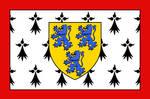 Flag of Limousin (Lemosin)