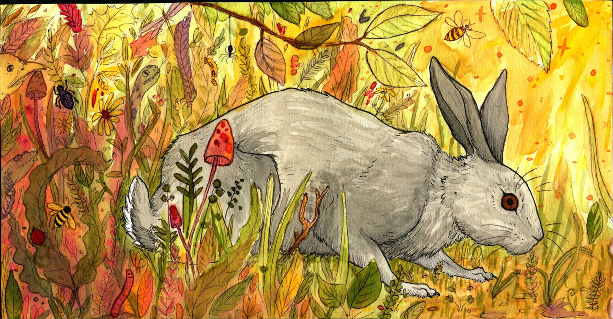 Rabbit by KiwiSeahorse