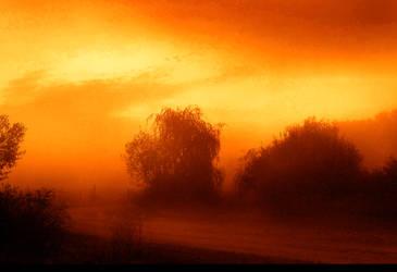 Dawn I by Callu
