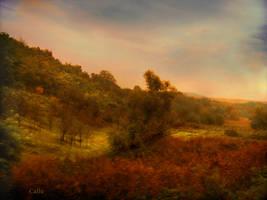 Autumn 2010 R by Callu