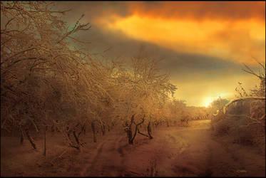 Winter Tale by Callu
