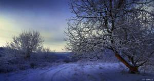 Crepuscul de iarna