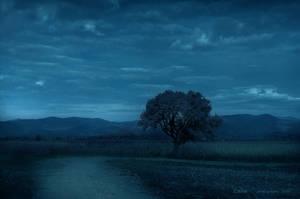 Peisaj de Albastru