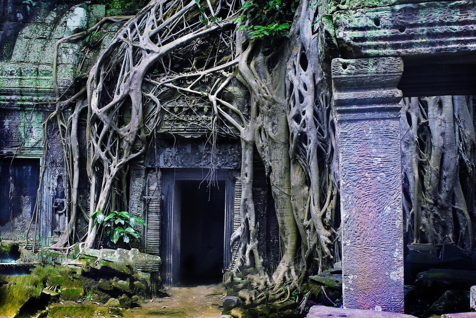 Angkor 2016