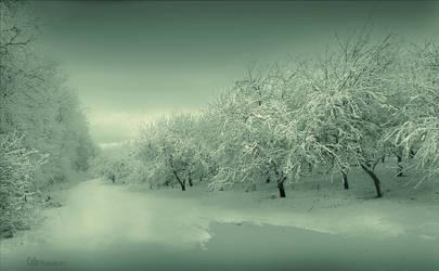 Winter by Callu