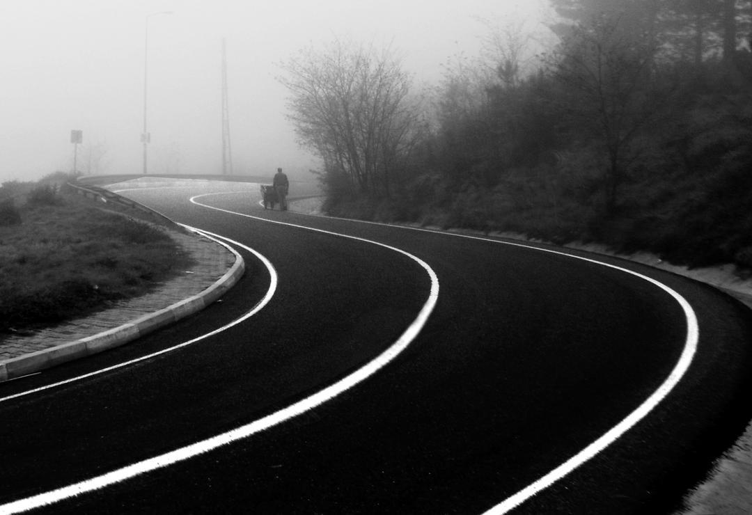 Fog by bermek