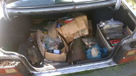 5- 1985 Mazda 626 - Project Brony Mobile - Trunk