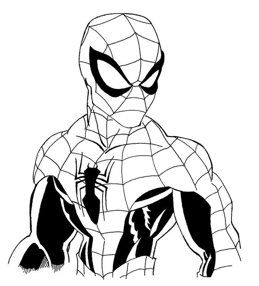 Line Art Man : Spider man inks by blaze belushi on deviantart