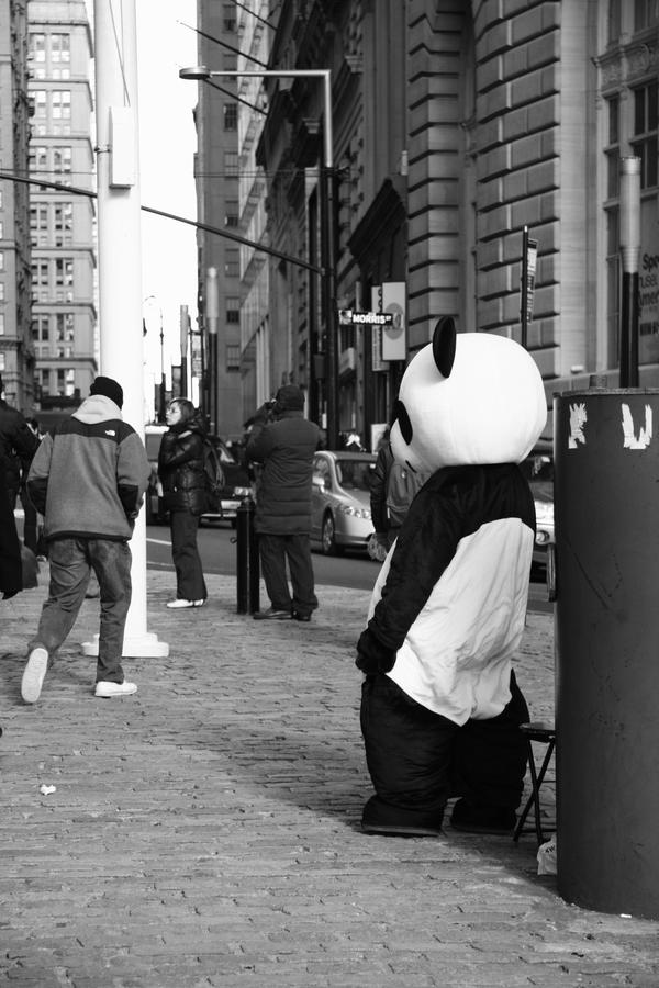 Sad panda pt. & Sad panda pt. 3 by OlliesPhotography on DeviantArt
