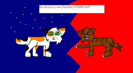 Starclan Or Darkforest