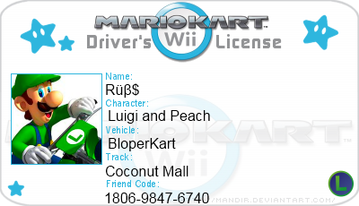 Mario Kart Wii License by RubsSoul