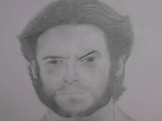 Wolverine - Hugh Jackman by CaptainUsoppSama