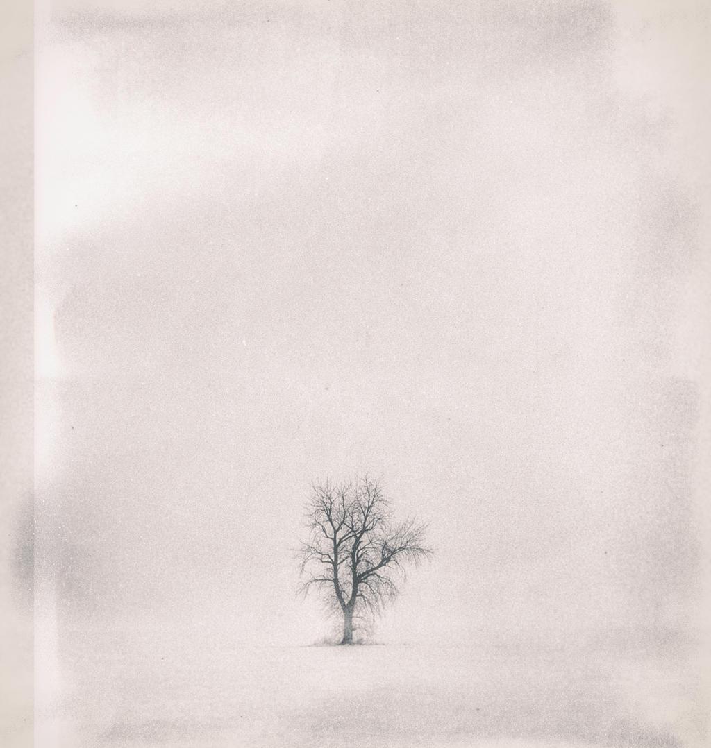Loner by DerekToye