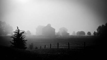 Rural Fog