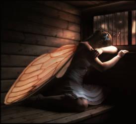 Shadow And Sadness
