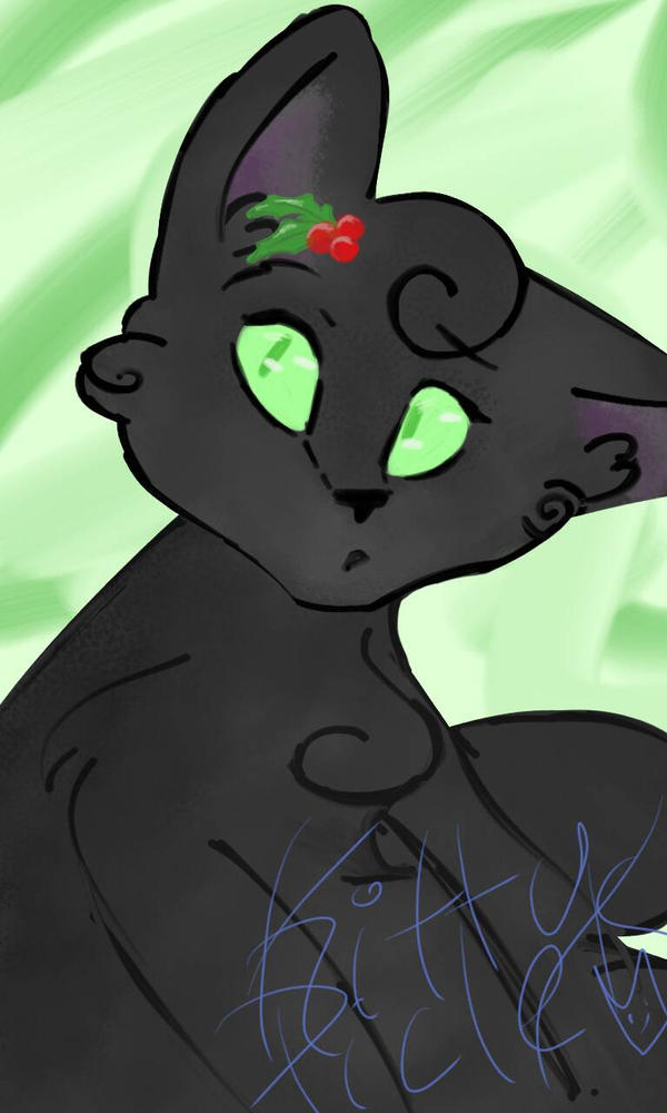 Hollyleaf by kittypicles221
