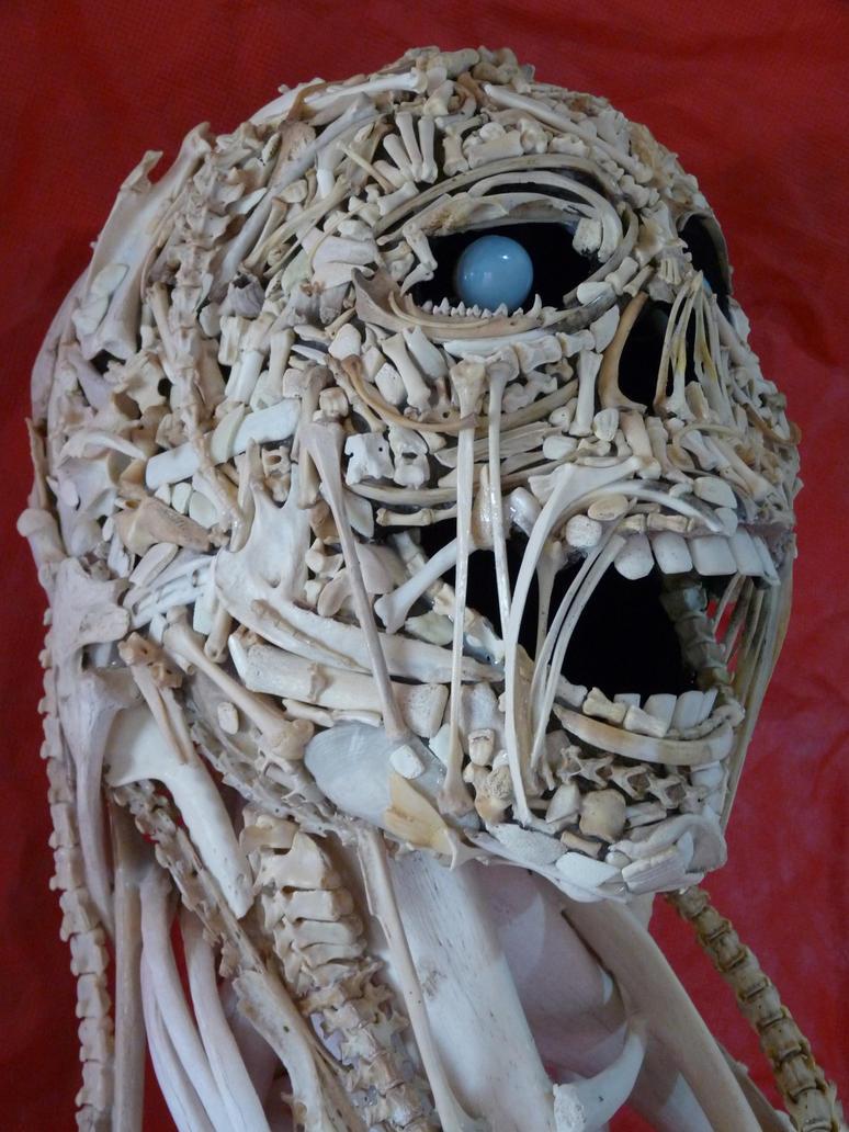 Bones head 1 by ClaudioTurcovich
