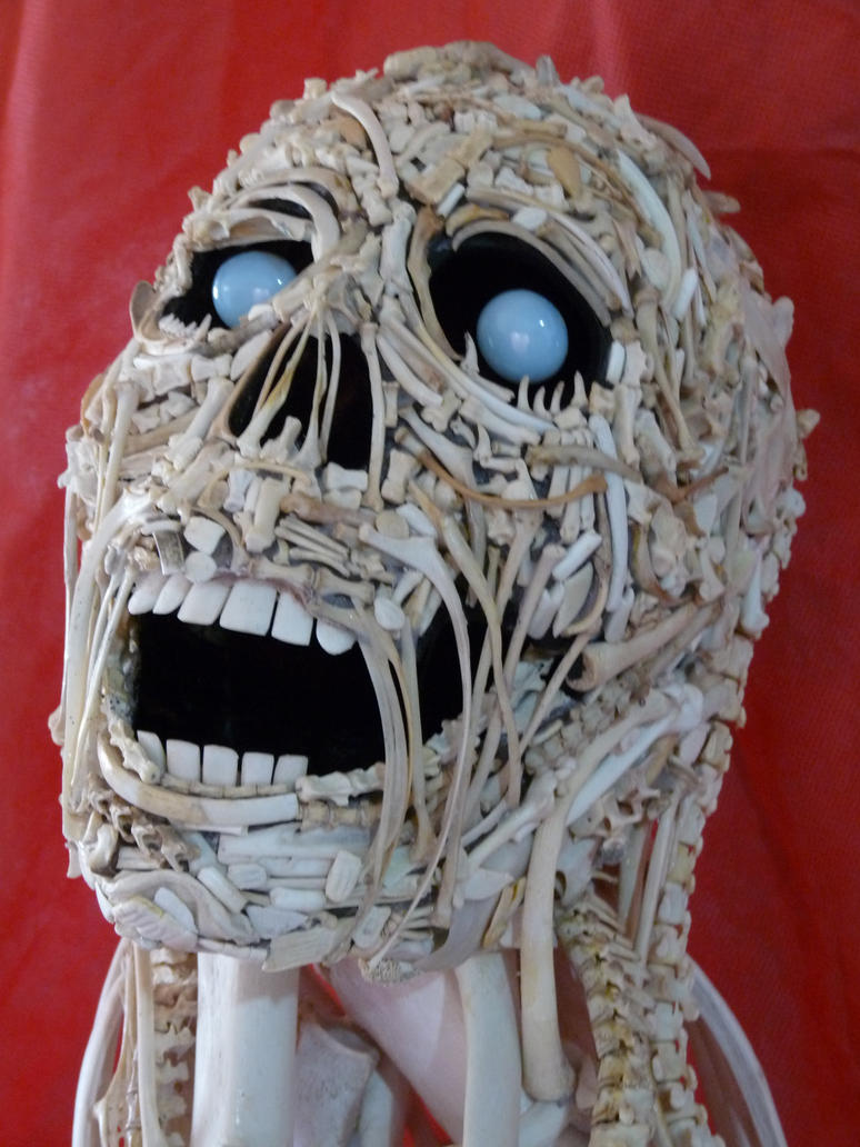Bones head 3 by ClaudioTurcovich
