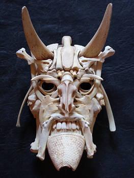 Dasypus mask 42