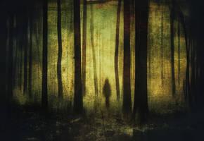 The Spirit Of Foreverdark Woods