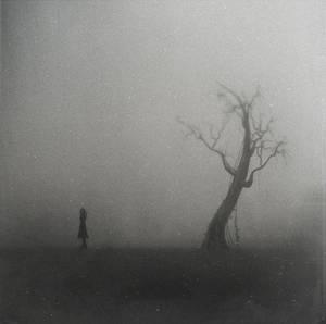 The Infinity Of Dead Trees II
