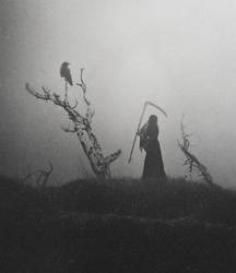 The Raven And The Reaper