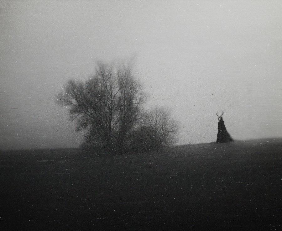 Valley Of Eternal Mist