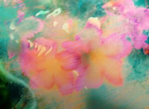 Flowers 695