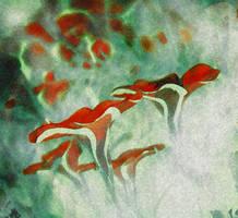 Flowers 696