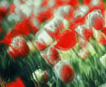Flowers 704