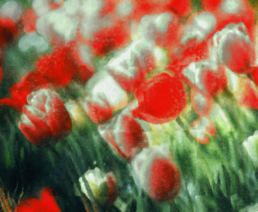 Flowers 704 by depalpiss