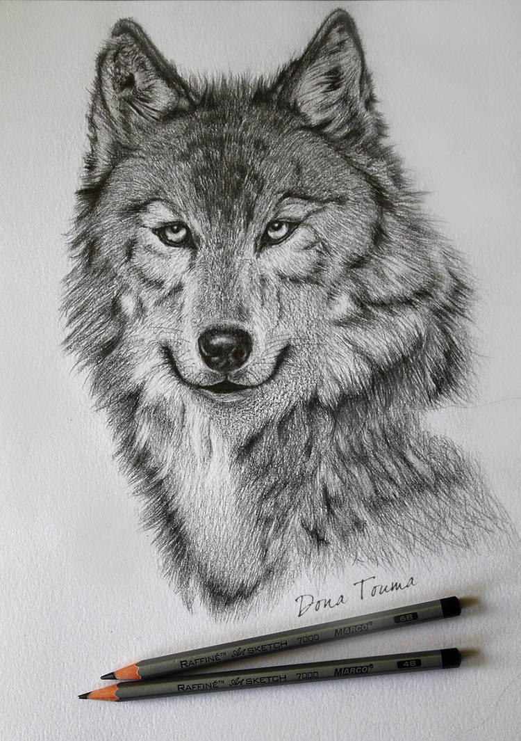 Wolf (Unfinished)