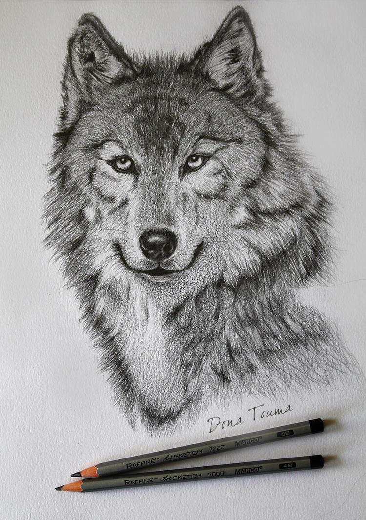 Wolf (Unfinished) by TD-Yukiryuu
