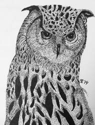 An Owl by TheBlondeDemonsCreed