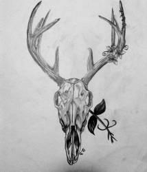 Deer Skull by TheBlondeDemonsCreed