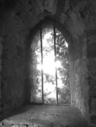 window by Proinfo