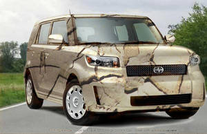 Camouflaged Scion