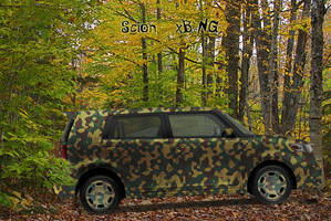 Camouflaged Scion III