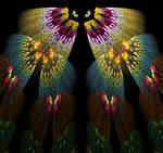Butterflies Fractal