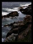 Acadia Shoreline Print