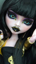 ~Nyx~ Monster High 17 inch Draculaura OOAK
