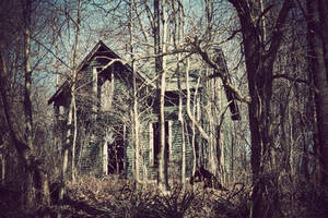 The witches house by LarissaAllen