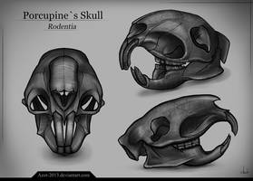 Porcupine`s Skull by Azot2019